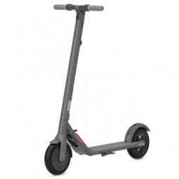 Электросамокат Ninebot KickScooter E22 (темно-серый)